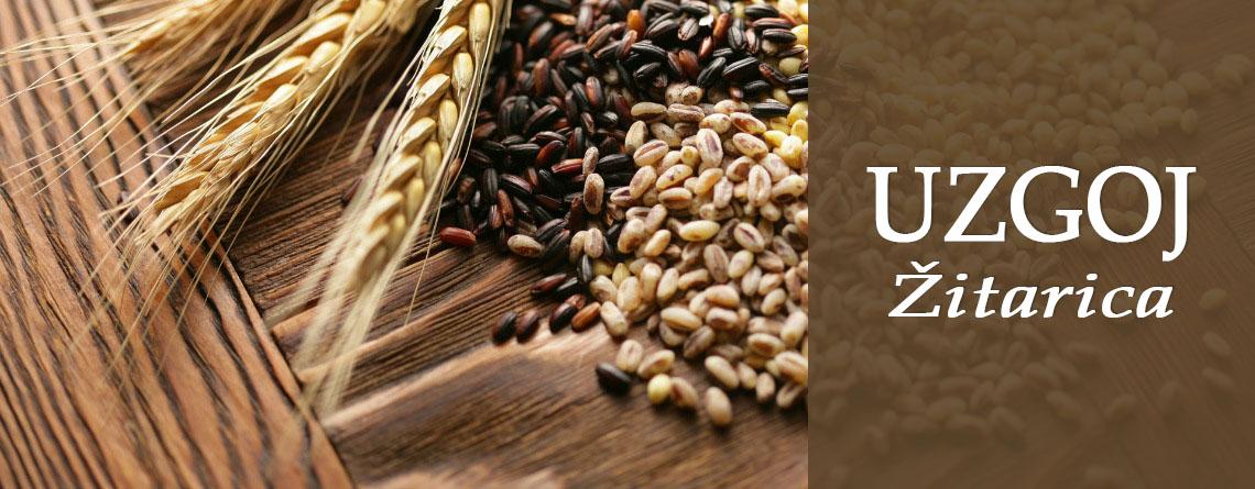 Slider-uzgoj žitarica