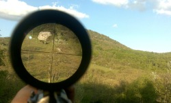 Organizacija lova